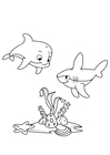 Coloring pages dolphin and shark
