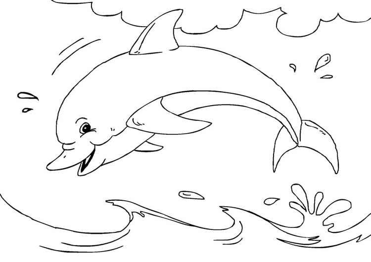 Coloring page dolphin