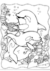 Coloring pages dolphins 2