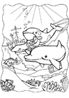 Coloring pages dolphins 3