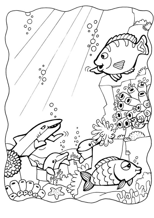 Coloring page dolphins and fish