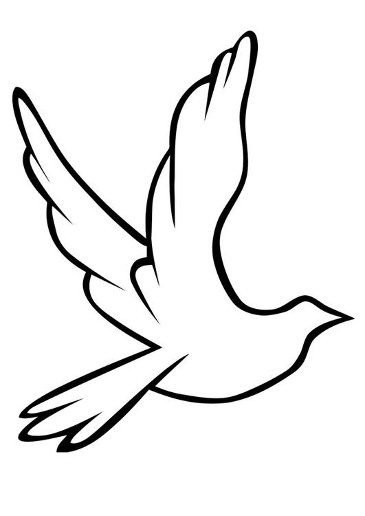 Coloring page dove - img 19488.