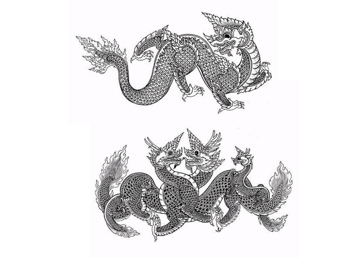 Coloring page dragons
