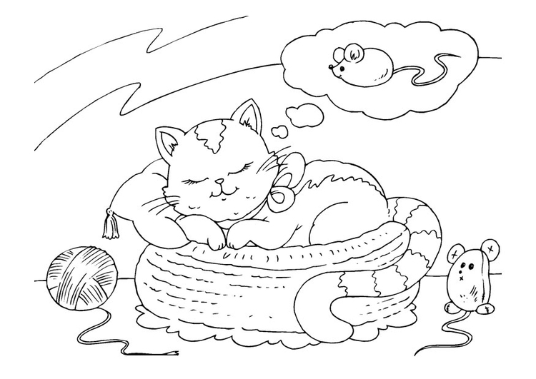 Coloring page dreaming cat