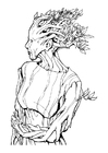 Coloring pages dryad - dryad