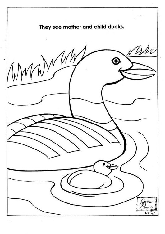 Coloring page ducks