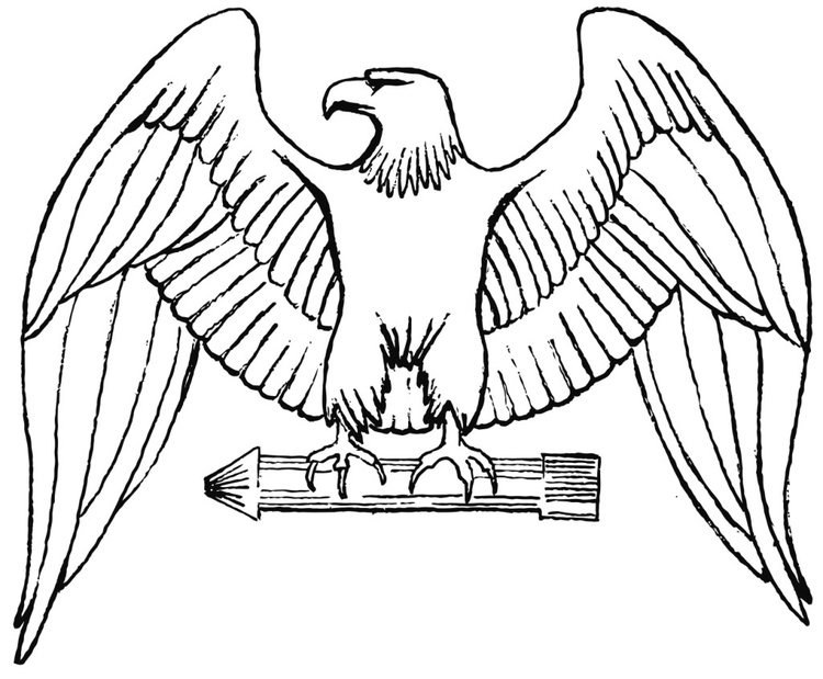 Coloring page eagle