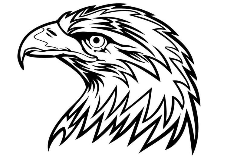 Eagle Mandala coloring page | Free Printable Coloring Pages | 531x750