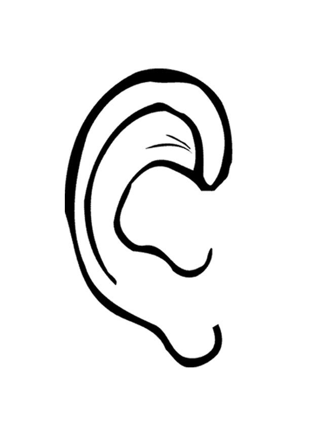 Coloring page ear img 9527 for Ear coloring pages