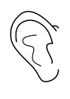 Coloring page ear