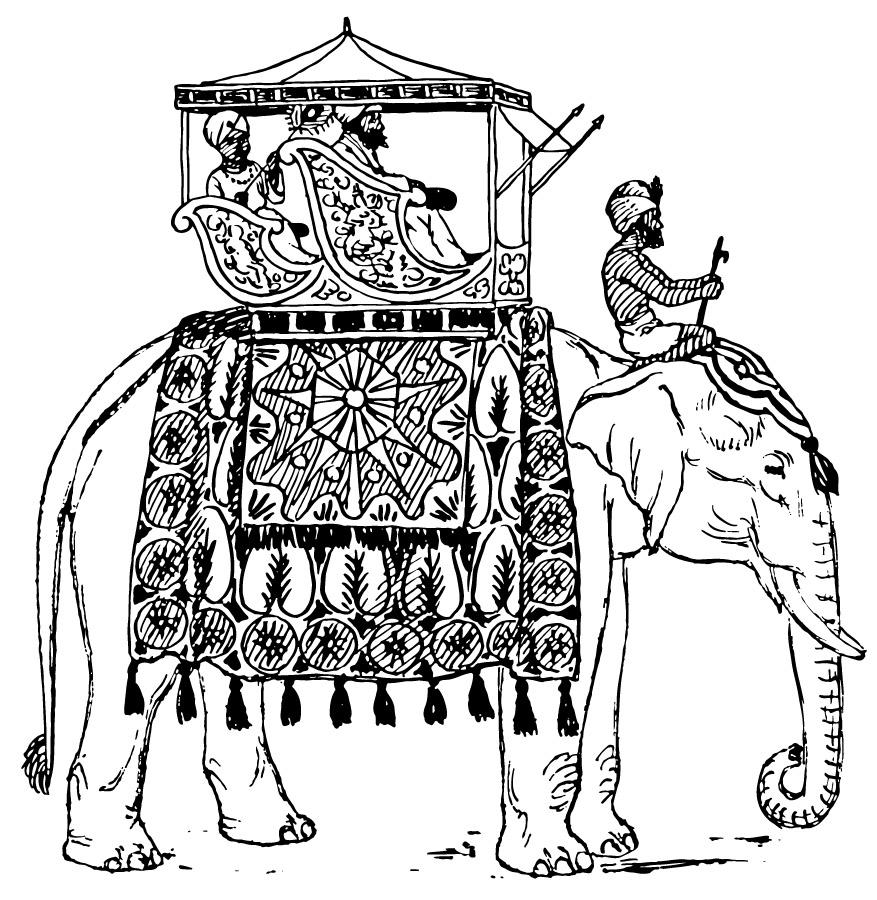 Colouring in an elephant - Colouring In For Adults Elephant