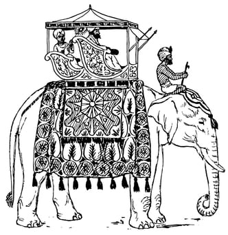 Coloring page elephant in India