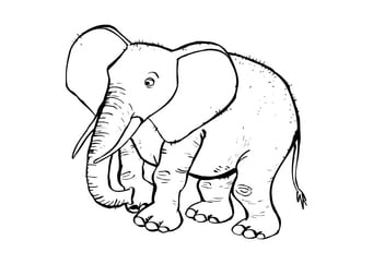Coloring page elephat