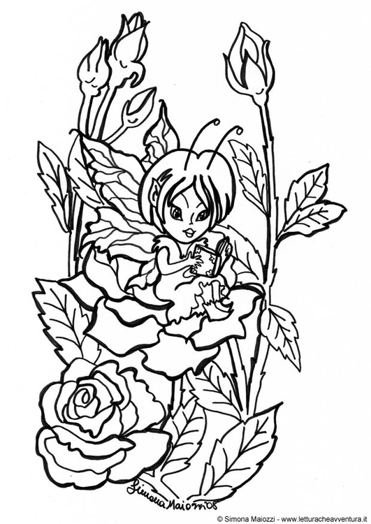 Coloring page fairy in between roses