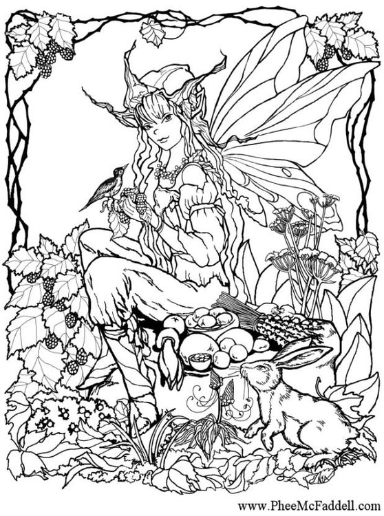 Coloring page fairyin the woods
