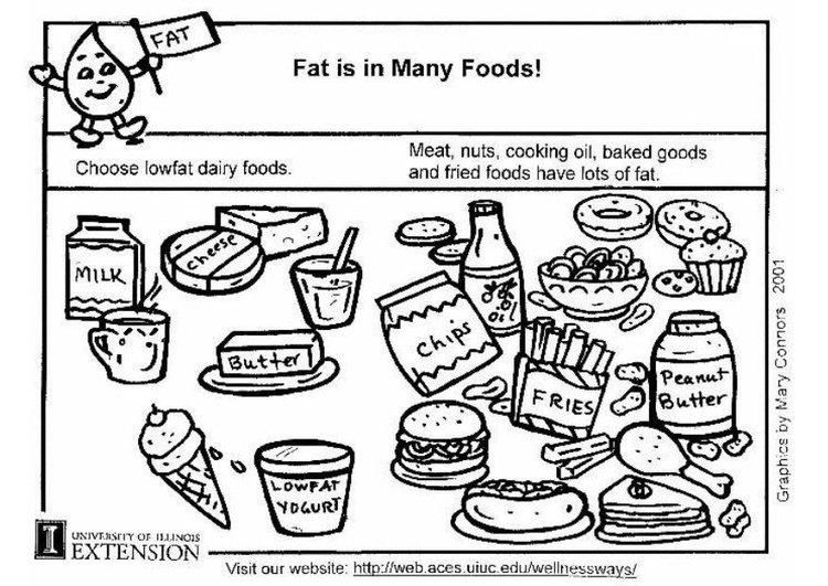 Coloring page fat in food
