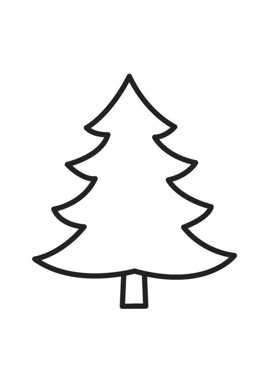 Coloring page Fir Tree