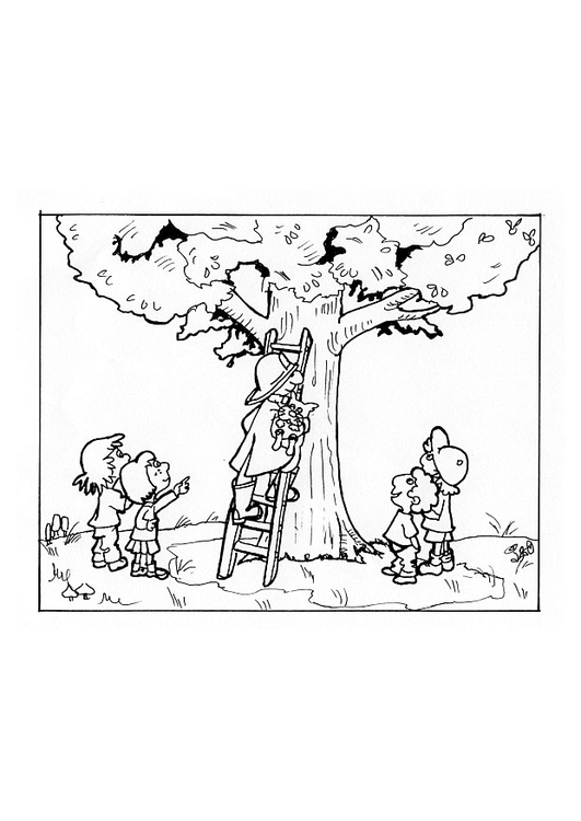 Coloring page fireman rescues cat in tree