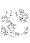 Coloring pages fish and squid
