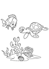 Coloring pages fish and water turtle