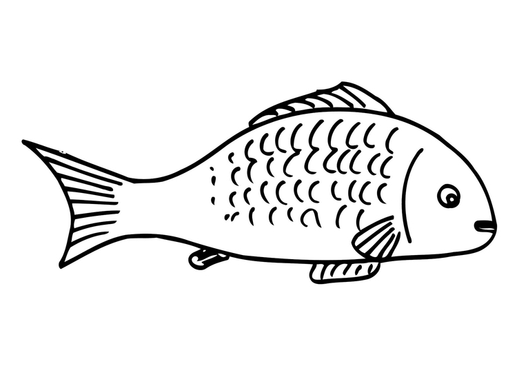 Fish Funny Coloring Page - Free Coloring Pages Online | 531x750