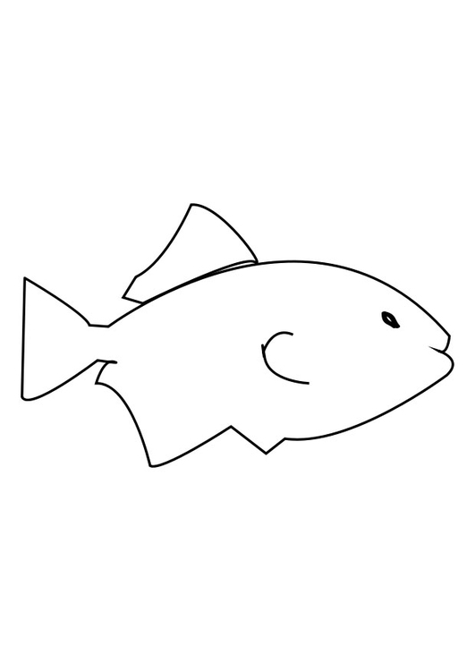 Coloring page fish - img 27607.