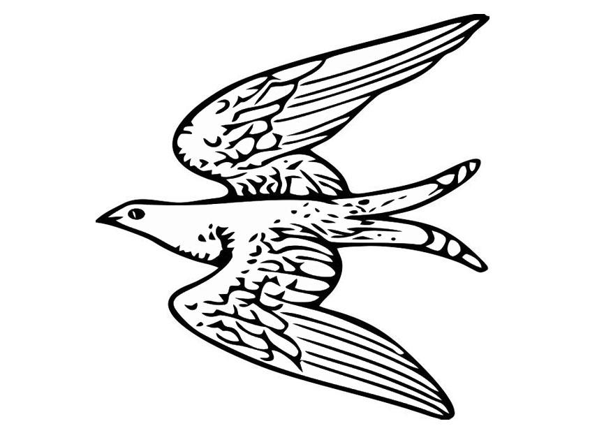 Coloring Page Flying Bird
