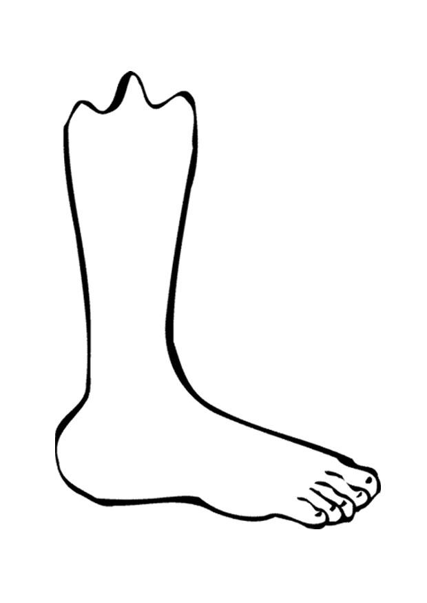 Coloring page foot img 9521