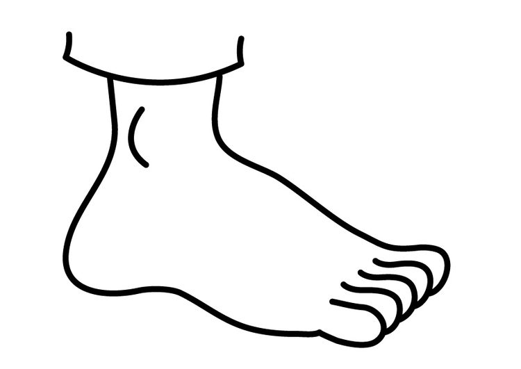 Coloring page foot