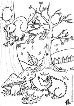 Coloring page forest