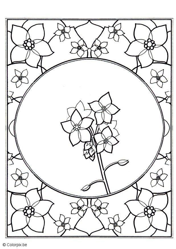 Coloring Page forget-me-not - free printable coloring pages