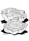 Coloring pages fossil