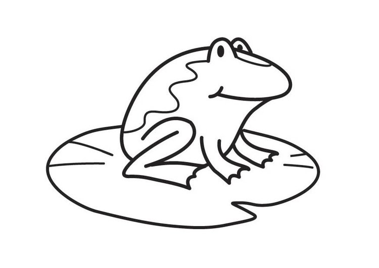 Coloring page Frog