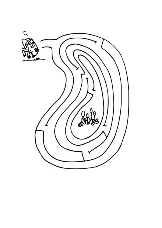 Coloring page frog maze