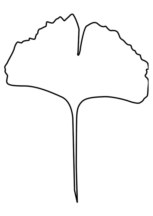 Coloring page ginko leaf
