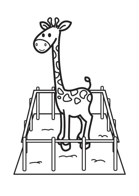 Coloring page Giraffe