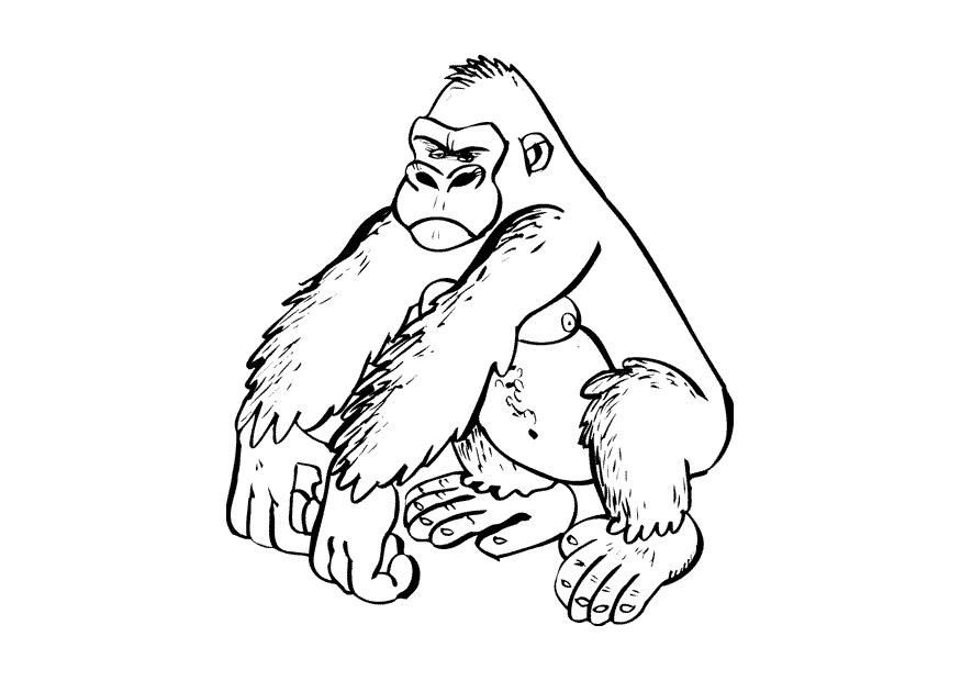 coloring page gorilla - img 9682. - Lego Chima Gorilla Coloring Pages