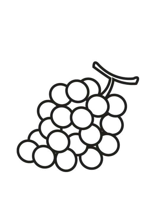 Coloring Page Grapes Img 23175