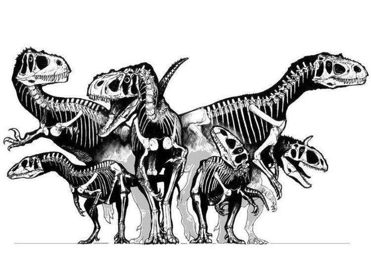 Coloring page group of dinosaurs - skulls