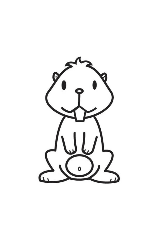 hamster coloring pages. Coloring page Hamster