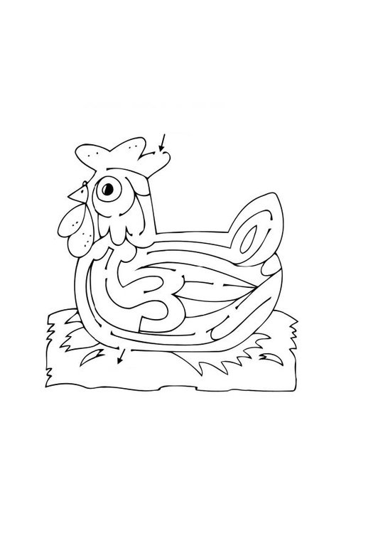 Coloring page hen maze