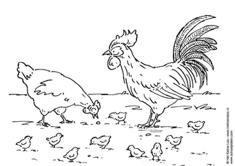 Coloring page hen, rooster and chicks