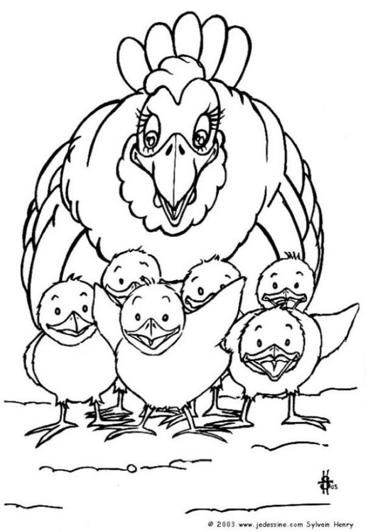 Coloring page hen with chicks