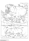Coloring pages hippopotamus