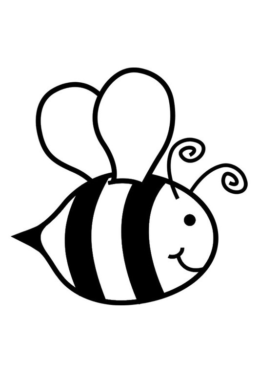 coloring page honey bee img 29039