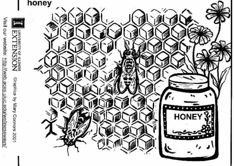 Coloring page honey
