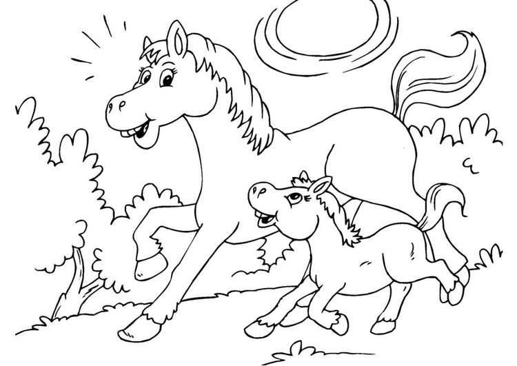 coloring page horse and foal - Coloring Pages Horses Foals