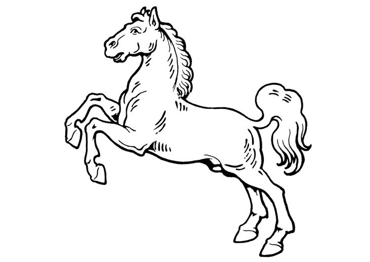 Coloring page horse - img 19310.