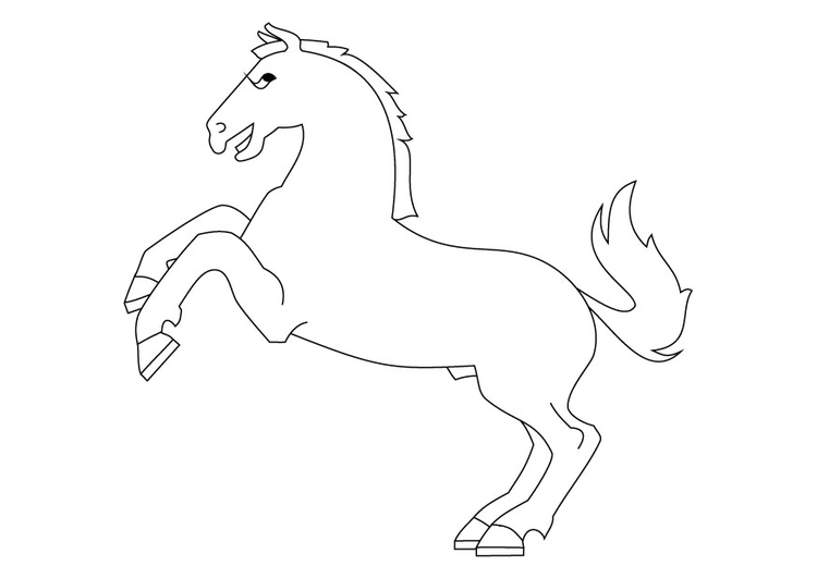 Coloring page horse on haunches