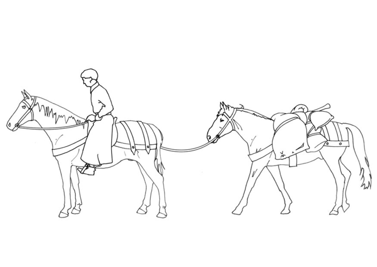 Coloring page horseman and load